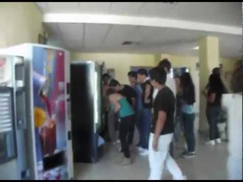 """Welcome to School """"Liceo Classico D.Borrelli"""""""