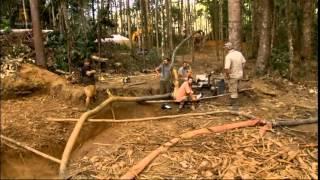 Золотоискатели Сезон:1 Серии: 7 / Бамазонка