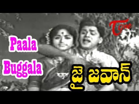 Paala Buggala Song | Jai Jawan Movie Songs | ANR | Bharathi