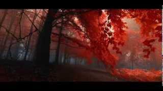 Armin Van Buuren - Shivers (Radio Edit)