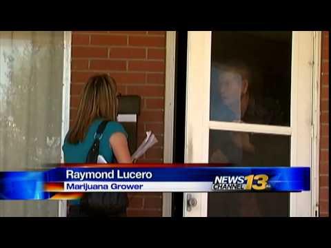 Budding marijuana grow in Pueblo backyard being investigated