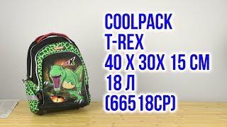 Розпакування CoolPack for Kids T-Rex 40 х 30 х 15 см 18 л 66518CP