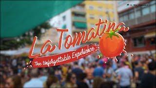 La Tomatina Festival In Spain (2019) | Tomato Festival In Spain