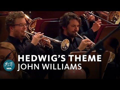 John Williams Hedwig S Theme Harry Potter Wdr Funkhausorchester Youtube