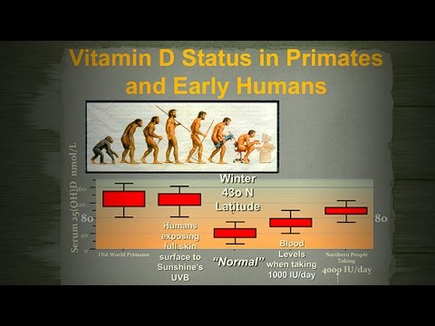 Results of a Prostate Cancer/Vitamin D Trial: Effectiveness Safety Recommendations