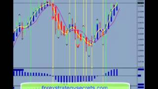 How To Way Easy Forex Trading Strategy While Working A Full Time Job Learn Forex Trading Strategy