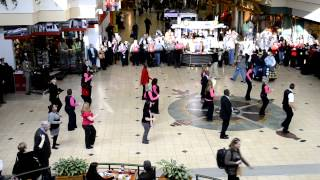 Delta Flash Mob at MSP - Full Video
