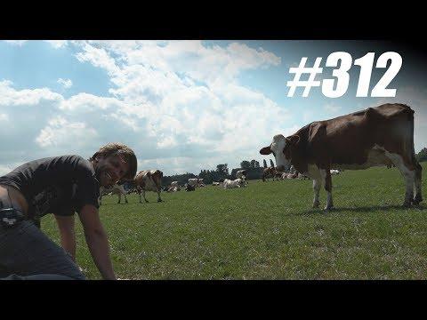 #312: Moeilijke Dingen Aanraken | TERRORRAD [OPDRACHT]