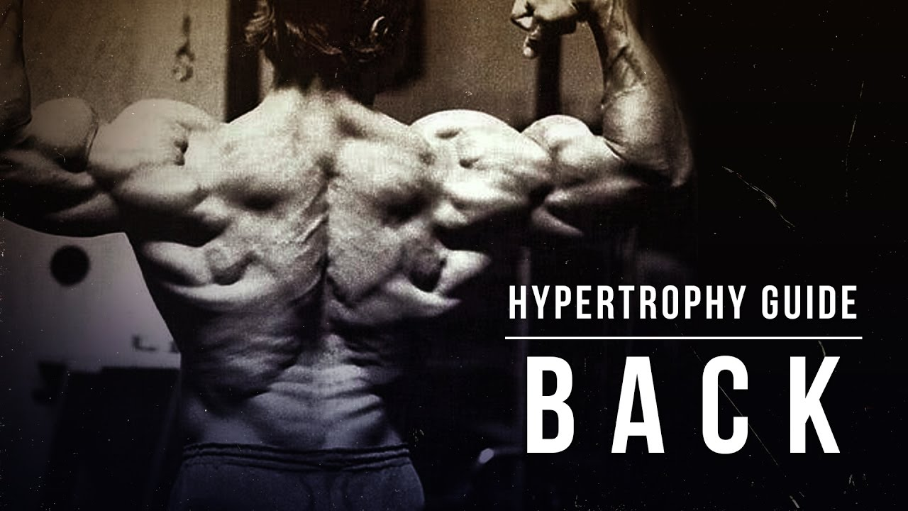 How to Build Muscle - A Beginner's Guide to Hypertrophy | BOXROX