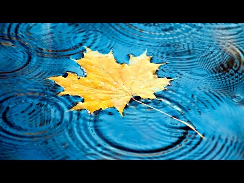 10 Hours Relaxing Piano Music & Rain Sounds: Peaceful music for re…