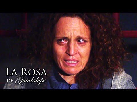La Rosa de Guadalupe | Mi Dulce Compañía