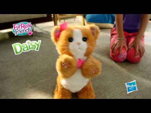 BE-FR-2014 FurReal Friends Daisy Mon Chat Joueur