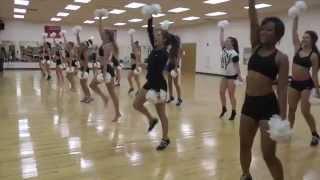 St. Cloud State Dance Team 2014-2015