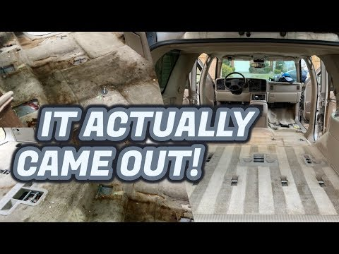 This Carpet Should Have Been BURNED!!  | Extreme Detailing