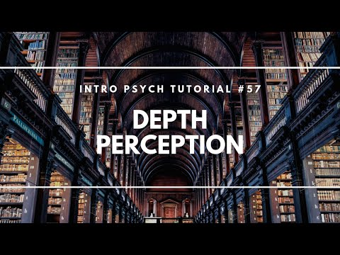 Depth Perception (Intro Psych Tutorial #57)