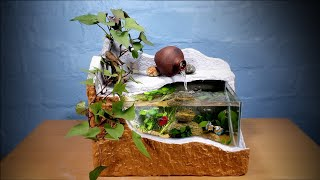 Make A Beautiful Waterfall Aquarium Very Easy - For Your House