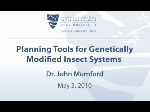 Planning Tools for Genetically Modified Insect Systems