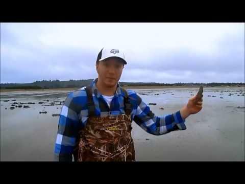 Sea Level Rise Documentary