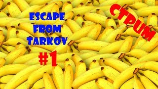 #1 Escape From Tarkov -...