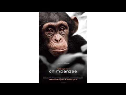 Chimpanzee Soundtrack - Playful Theme - Nicholas Hooper