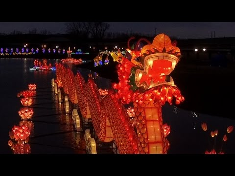 Float among the lights of the NY State Chinese Lantern Festival