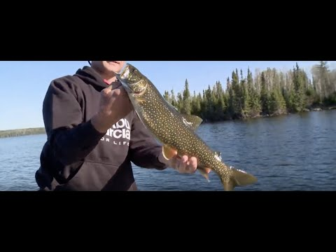 Multispecies Fishing In Remote Lakes At Ontario's Woman River Camp