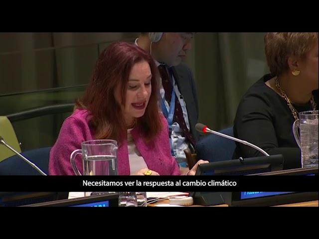 Resumen de las actividades que realizará María Fernanda Espinosa en el 2019