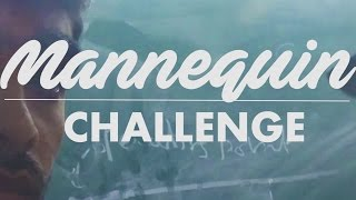 Video Mannequin Challenge | COLLEGE EDITION | BORED/Silly download MP3, 3GP, MP4, WEBM, AVI, FLV Januari 2018