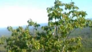 Uncanoonuc Mountains - WikiVisually