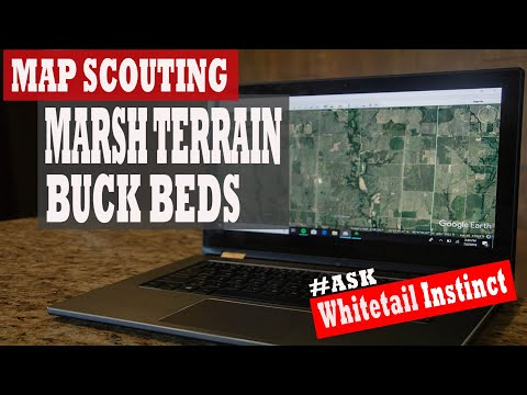 4 TIPS FOR SCOUTING BUCK BEDS:  Map Scouting Marsh Terrain