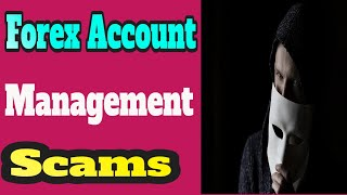 Forex Account Management Scams