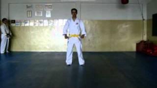 heian nidan ( segundo kata ) karate do shotokan