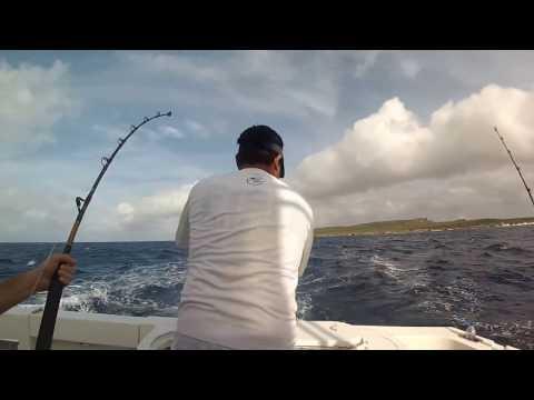 deep sea fishing in Curacao
