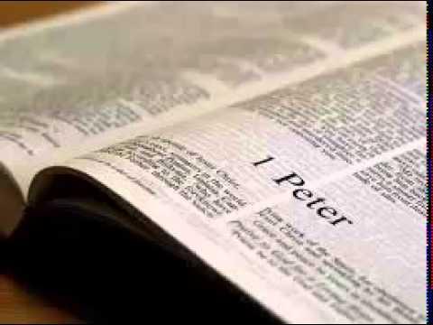 1 Peter 3 - New International Version NIV Dramatized Audio Bible