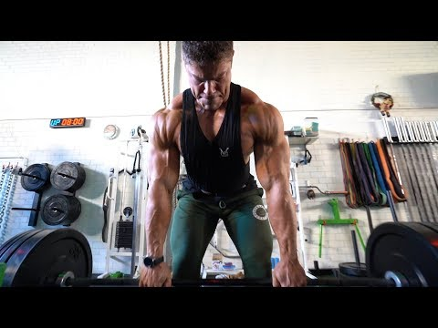 Back And Biceps - Wesley Vissers VS David Hoffmann