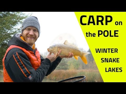 Pole Fishing For Carp And F1s, Winter Snake Lakes - Rob Wootton