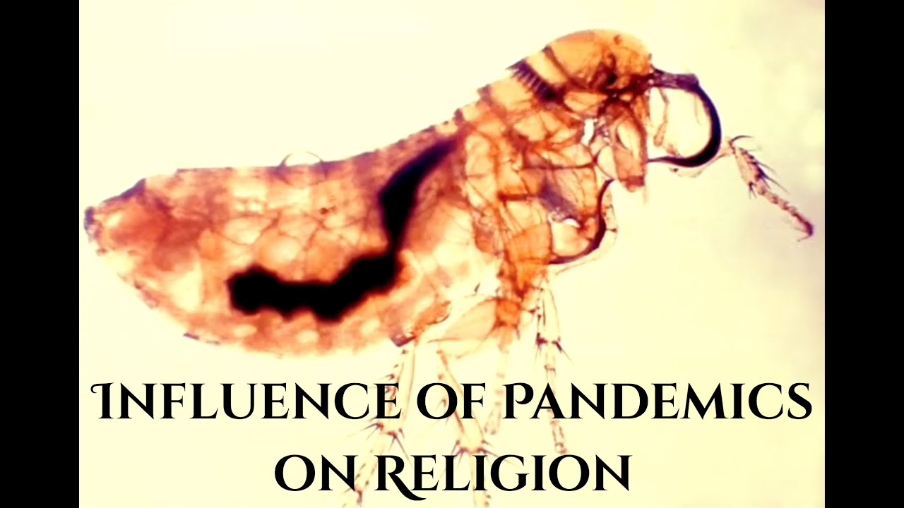 Influence of Pandemics on Religion
