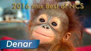 2016 mix Best of Free EDM (NCS) Happy New Year! [FREE]
