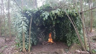 Primitive Technology: Build a hut with natural plants