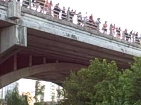 Austin Bat Colony, Congress Ave Bridge ~ Aug 5, 2009