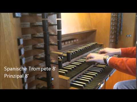 Registervorstellung der Rieger-Orgel - Stoptour of Rieger Organ (1/2)