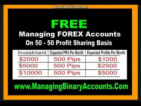 Free demo forex trading hindi