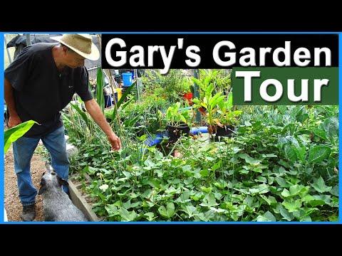 Gardening Ideas   Summer Garden Tour Growing in Woodchips & Vertical Gardens & Container Gardening