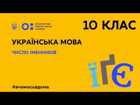 10 клас. Українська мова. Число іменників (Тиж.2:ПН)
