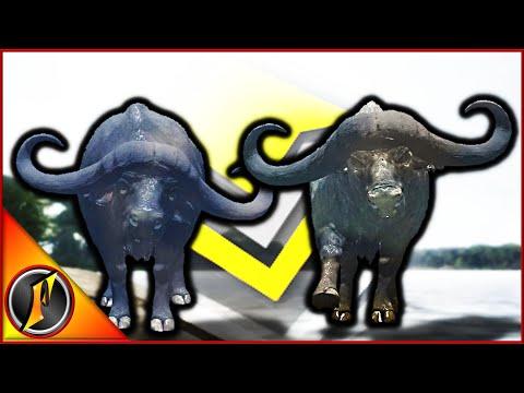 2x Diamond Cape Buffalo??? | 400 Meter Gun & Charging Bow Shots!