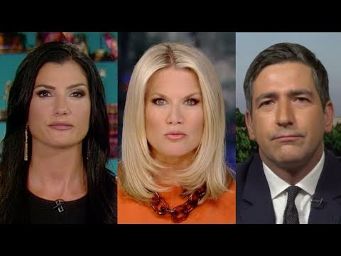 "Dana Loesch Tells Martha MacCallum ""This Isn't a Gun Issue ..."