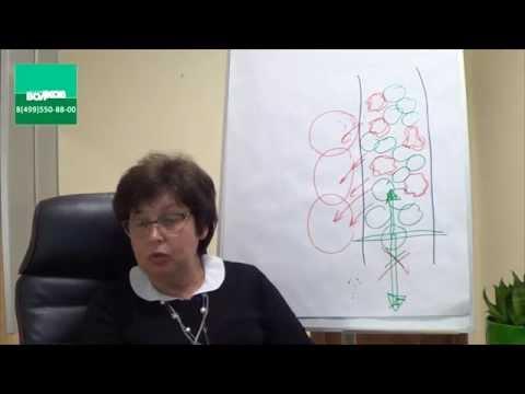 Диетолог Анатолий Волков о вреде взвешивания, подсчёте