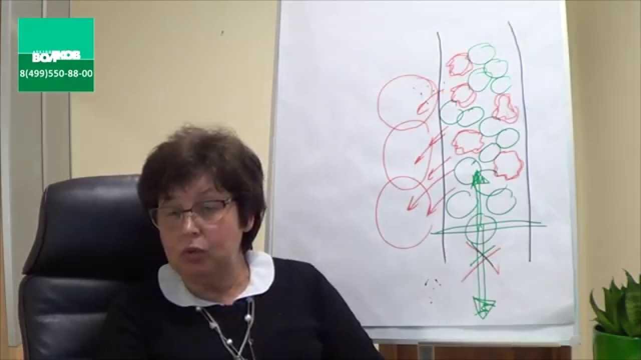 диетолог волков интервью