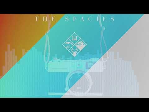 The Spacies - Pictures [Vivian Lawrence Remix]