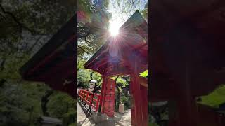 見るだけで♪怖いくらい【仕事】がうまくいき【お金】が舞い込む!東京パワースポット「愛宕神社」遠隔参拝 |金運上昇|恋愛|結婚|縁結び| ジャニーズWEST・スノーマンファン開運神社